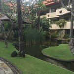 Some photos of the hotel grounds, pools, food, room and other areas