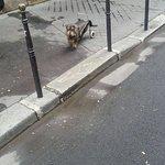 Photo de Le Marais