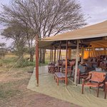 Olakira Mara River Camp, Asilia Africa Foto