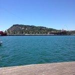 HCC Lugano Foto
