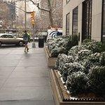 Photo of Gramercy Park Hotel