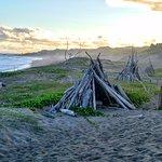 Driftwood tepees on the coast