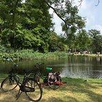 Photo of Vondelpark