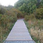 1.3 km trail to beach