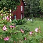 Foto de Sikfors Herrgard