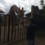Photo de La Aurora Zoo