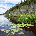 Lost Lake Wilderness Lodge Foto
