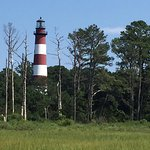 View of the lighthouse on Chincoteague Island from our boat tour