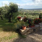 Agriturismo Il Torrino Foto