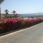 Foto di Xperience Sea Breeze Resort