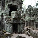 Various sights in the Ta Prohm temple complex