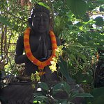 Geria Giri Shanti Bungalows Photo