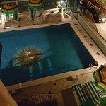 Photo of Hotel Kennedy