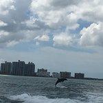 Sea Screamer Foto