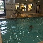 This photo shows a little over half of the pool, the hot tub and the fitness room.