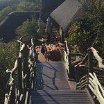 Buffalo Ridge Lodge Foto