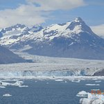 Stan Stephens Glacier & Wildlife Cruises Foto