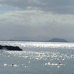 panorama su Furteventura da Playa Papagayo