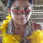 tribo dessana