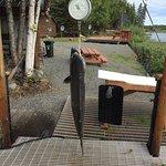 Riddle's Fishing Lodge Foto
