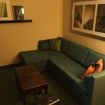 SpringHill Suites Morgantown Foto