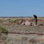 DoBell Ranch
