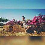InShot_20160727_105447_large.jpg