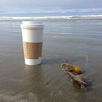 Cayucos Shoreline Inn...on the beach Photo