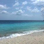 Voyager Bonaire Tours Foto