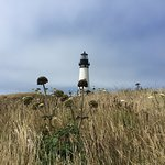 Yaquina Head Outstanding Natural Area Foto