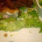 Recycled Salad Anyone?