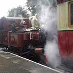 Steam Railway too, not to mention the buses plus lots more!