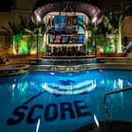 Score Birds Hotel