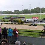 Photo de Kingdom Greyhound Stadium Tralee