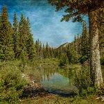 Beautiful Montana Scenery!