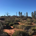 Photo de Desert Gardens Hotel, Ayers Rock Resort