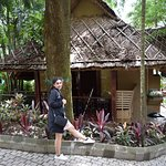Beautiful Cottages with a jungle feel