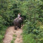 Photo de Bueng Pai Farm