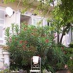 Снимок Nice Garden Hotel