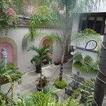 Foto de Casa de Las Bugambilias B&B