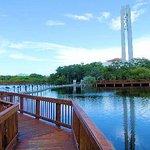 Hilton Saint Petersburg Carillon Park Foto
