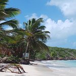 Flamenco Beach Foto