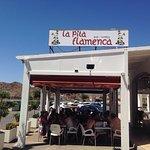 La Pita Flamenca