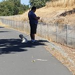 Contra Costa Canal Trail Photo