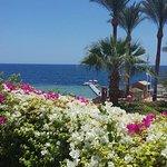 Sunrise Diamond Beach Resort Foto
