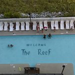 Foto de The Reef at South Beach
