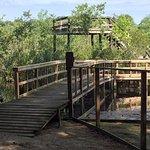 Photo de Holly Lake Camp Sites