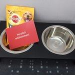 Freundliches Willkommen auch für die Hunde ;)