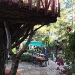 Photo of Lezzetci Camlik Restaurant