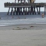 Tybee Island Beach Foto